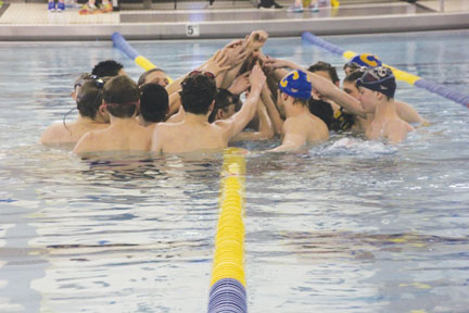 New additions to the men's swim team only add to its success