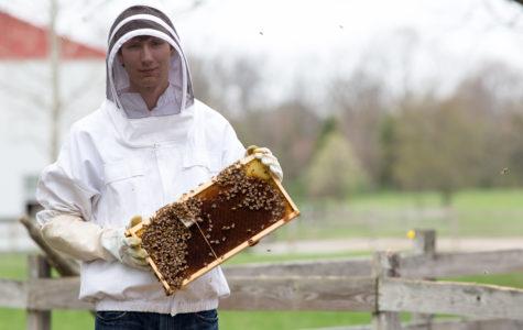 BEE-HOLD THE BUZZ: Senior Kyle Betelak is a beekeeper