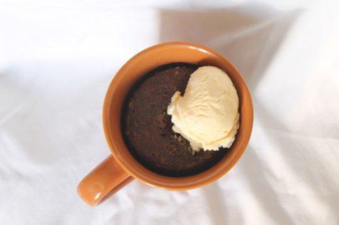 Introduction to Mug Food: Nutella Mug Cake