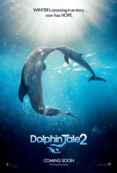 Dolphin Tale 2 makes a splash, or rather, a ripple
