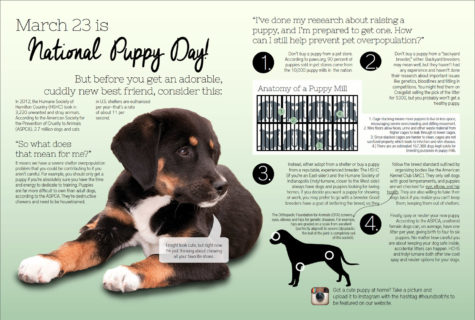 March 23 is National Puppy Day