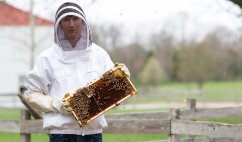 BEE-HOLD THE BUZZ: Senior Kyle Betelak is a beekeeper
