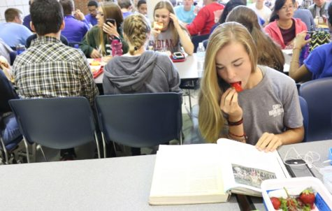 Students assess importance of food safety in healthy decision-making