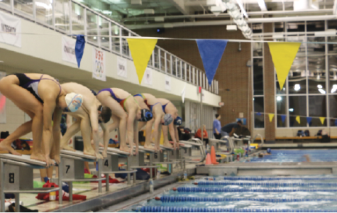 Swimming through Generations: CHS swim team prepares for its  record-breaking season, looks back 29 years