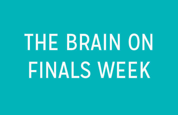 The Brain on Finals Week: Graphic