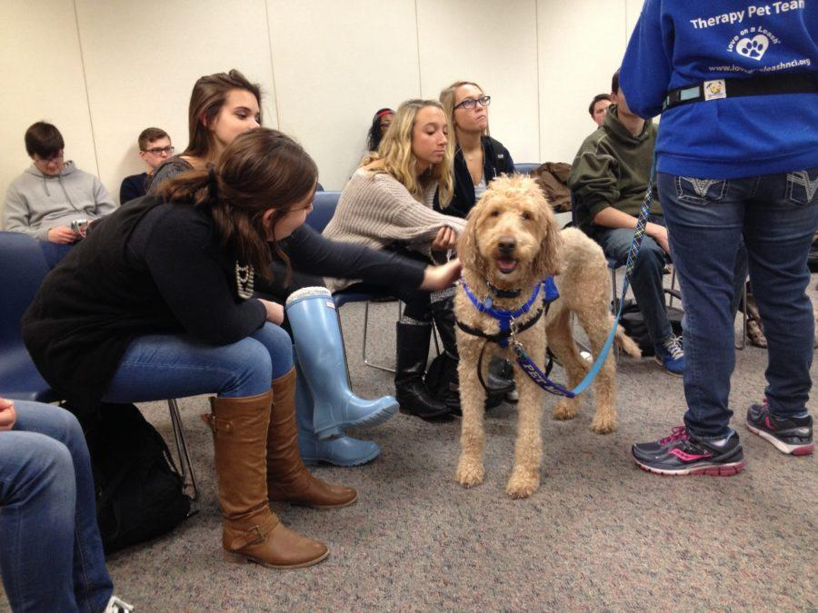 A therapy dog at the MUSE event on Jan. 14 interacts with students while its handler answers questions about therapy dogs. The next MUSE event will be on Feb. 4 and will feature a flight simulator.