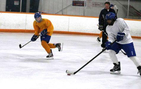 Carmel Gold hockey team to tournament Friday, Saturday and Playoff Sunday