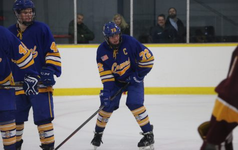 IceHounds Blue to play double-header on Jan. 28 at the Swonder Ice Arena in Evansville
