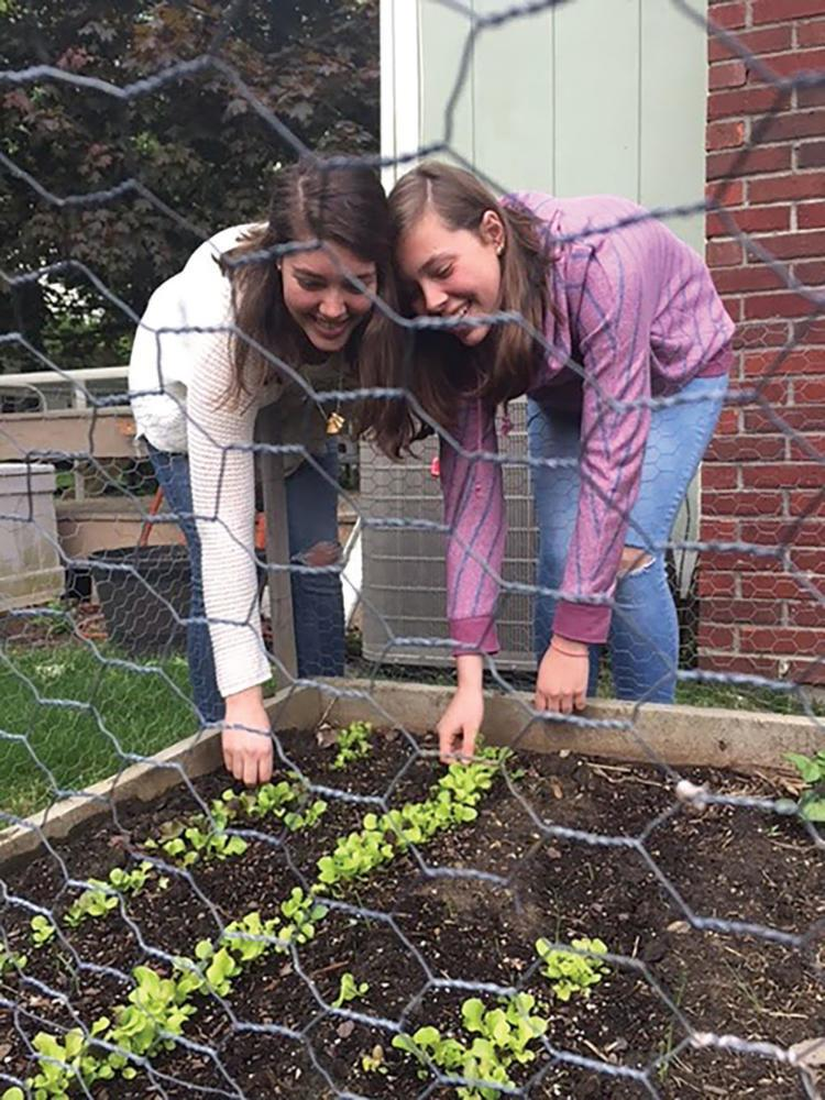 The Krall sisters tend to the vegetable garden in their backyard. According to Kyra, they grow potatoes and cabbage among other vegetables in their garden in order to try to maintain a healthy and organic lifestyle.