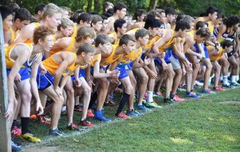 Men's cross-country team prepares for MIC Championship