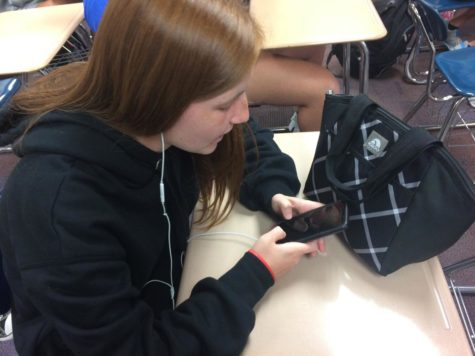 Senior Sarah McDanell uses the Canvas app to  look at files for her AP Statistics class. She said although not all her teachers used Google Classroom, she liked the layout and prefers it to Canvas.