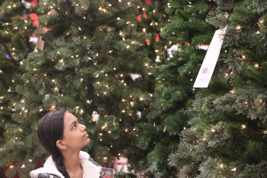Freshman Shreya Sinha looks through fake Christmas trees at Target. She said she used to make Christmas ornaments with her brother when they were younger.