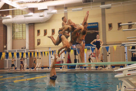Diving in head first: CHS swimming and diving teams work together to bring home titles