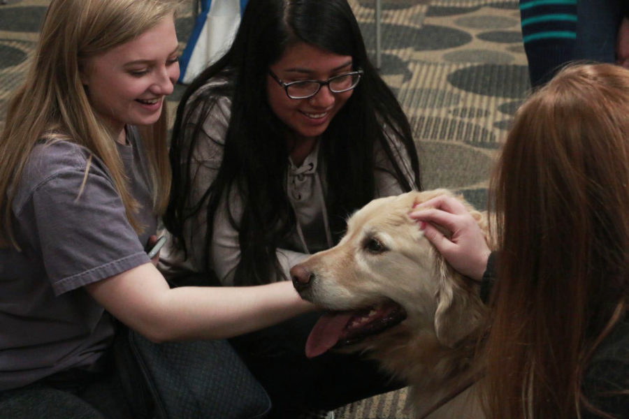 Students+pet+therapy+dogs+brought+in+Monday+as+part+of+Mental+Health+Awareness+Week.