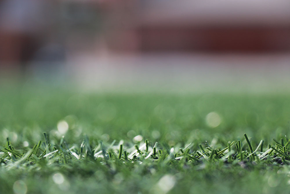 Lacrosse teams play their home matches at Murray Stadium, covered by turf. Throughout the lacrosse season the department has abided to all IHSAA field standards. The athletic department made the switch to turf in 2013.