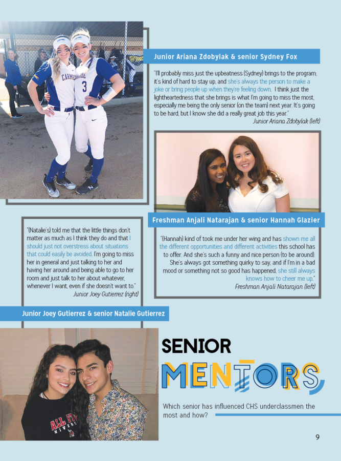 Senior Mentors