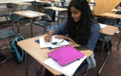 K-8 Mentors look forward to mentoring younger students