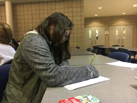 "Katelyn Wang, speech team member and sophomore, works on a piece for the next speech team competition. Wang said she is excited this year because old and new members are all getting along well. ""We're really bonding as a team and forming long lasting relationships,"" she said."