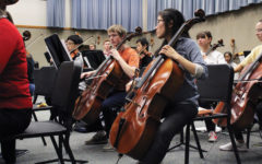 A Major Development: Orchestra students to share stage with  Carmel Symphony Orchestra this Sunday