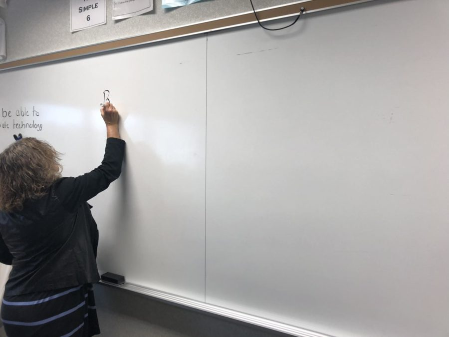 Co-sponsor of Lifelines Rebecca Overbey plans out when each activity will happen for pre-winter break week. Some potential activities are a trivia contest and a movie. Lifelines club has been working hard this year to get more students involved in the activities,