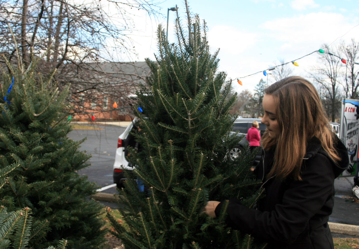 Junior Natalie Walters displays a Christmas tree that her church is selling to raise money for their youth mission trips. Walters said this is a good way to help out the church as well as the community.