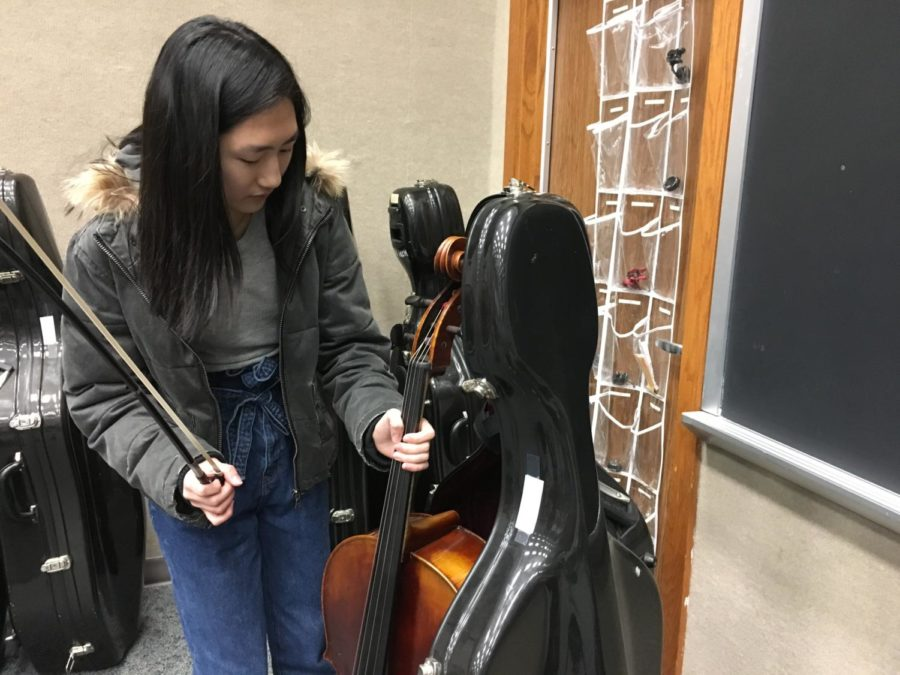 Carol+You%2C+member+of+Symphony+Orchestra+and+sophomore%2C+unpacks+her+cello+for+an+after+school+rehearsal.+You+had+already+practiced+her+chamber+music+in+class+in+order+to+prepare+for+the+upcoming+chamber+music+concert+on+Jan.+30+but+said+she+was+looking+forward+to+running+through+it+with+the+band+members+during+rehearsal.+%E2%80%9CWe+practice+%28our+chamber+music%29+after+school+with+the+percussion%2C+winds%2C+and+brass%2C%E2%80%9D+You+said.+