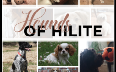 Hounds of HiLite
