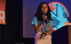 Q&A with junior Isabella Fallahi on her involvement in today's nationwide strike activist Greta Thunberg is attending