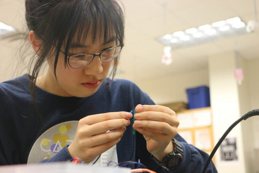 Junior Briana Chen