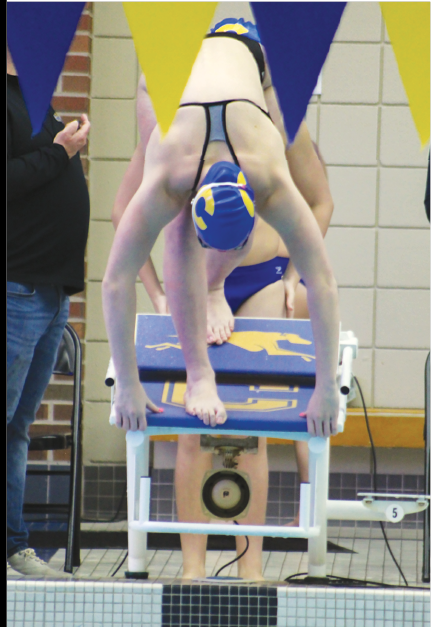 ON YOUR MARKS:  Swimmer and freshman Meghan Christman, dives off the block at a dual meet against HSE on Dec. 17. Christman said she feels pressure due to women's swimming team's history of success at State. She added that this pressure motivates her to work harder so that she can  help the team keep its streak.