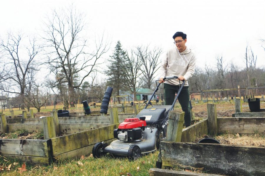 Junior Max Chang mows the grass along the box plots on his farm, NuJac Gardens. Chang said the maintenance of a farm requires many responsibilities including this one.