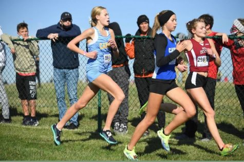 Women's Cross Country finishes tournament season with State win, looks to compete at National meet