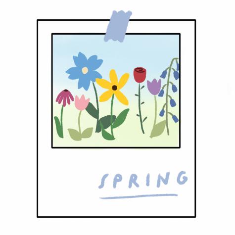 Music Playlist: Spring Beginnings [MUSE]