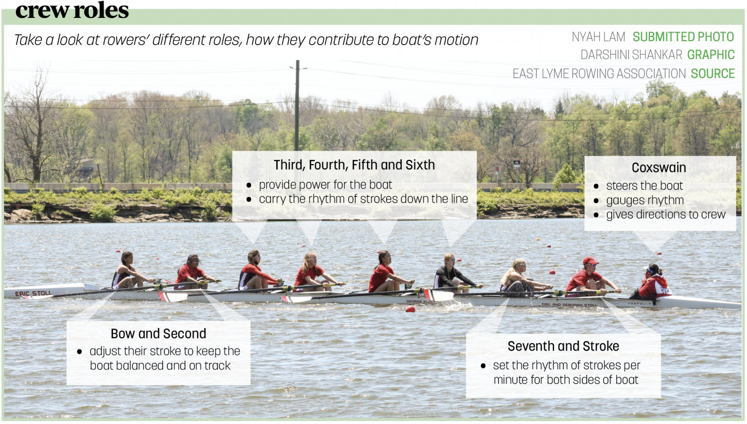 Rowing Graphic